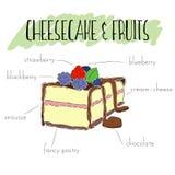Cheesecake και φρούτα Στοκ Εικόνες