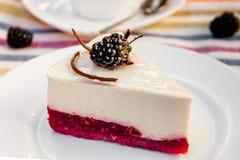 Cheesecake με τα μούρα στοκ φωτογραφία