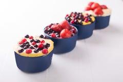 Cheesecake με τα μούρα στοκ φωτογραφίες με δικαίωμα ελεύθερης χρήσης