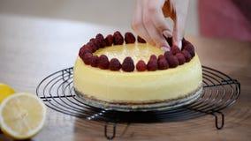 Cheesecake της Νέας Υόρκης βανίλιας με τα σμέουρα απόθεμα βίντεο