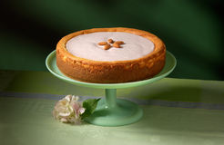Cheesecake. On green background with a flower Royalty Free Stock Photography
