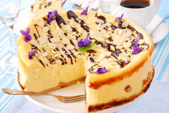 Cheesecake with almonds Royalty Free Stock Photo