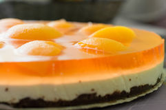 Cheesecake with apricot slices. Homemade cheesecake with fresh apricot slices on the table stock images