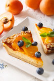 Cheesecake with apricots, blueberries, mint and almonds close-up Stock Photography