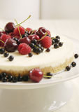 Cheesecake with berries Royalty Free Stock Photos