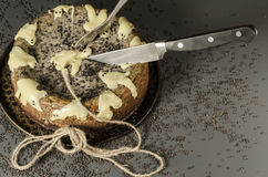 Cheesecake with black sesame seeds on Halloween Stock Images
