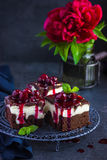 Cheesecake brownies  with cherry sauce Royalty Free Stock Images