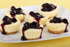 Cheesecake Cupcakes Royalty Free Stock Images