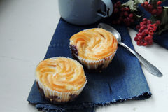 Cheesecake cupcakes and cocoa Stock Image