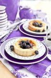 Cheesecake with fresh blueberries Stock Photo