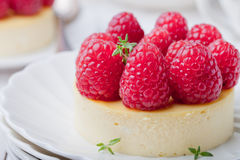 Cheesecake with fresh raspberries on a white plate. Dessert. Cheesecake with fresh raspberries on a white plate Royalty Free Stock Images