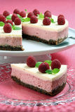 cheesecake malinka Obrazy Royalty Free