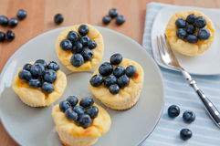 Cheesecake Muffins with Blueberries Stock Images