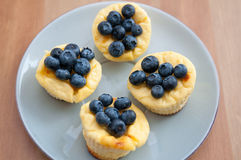 Cheesecake Muffins with Blueberries Stock Photos
