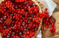 Cheesecake with red currant and gooseberry. Sour cream cheesecake with red currant and gooseberry Royalty Free Stock Images