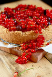 Cheesecake with red currant and gooseberry. Sour cream cheesecake with red currant and gooseberry Royalty Free Stock Photos
