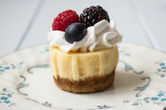 Cheesecake. With wihip cream and fresh berries stock images