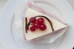 Cheesecake z czerwonymi rodzynkami i czekoladowa dekoracja na talerzu obrazy royalty free