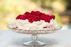 Cheesecake z jagodami na białym tle obrazy royalty free