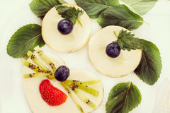 Cheesecakes as animal face with fresh berries, retro-insta effect. Cheesecakes as animal face with fresh berries and mint leaves, retro-insta effect, close-up Royalty Free Stock Photography
