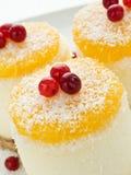 cheesecakes cream прокишут Стоковые Изображения RF