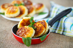Cheesecakes fritters. Fried cheese fritters in a frying pan on the table Royalty Free Stock Photos