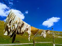 Cheesecloth hanging to dry. In the backyard of a Carpathian mountain hut in Romania Stock Photography