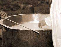 Cheesemaker checks with hand the milk's temperature inside the b Stock Images