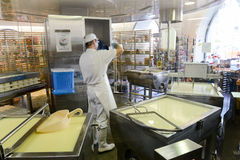 Cheesemaker preparing the cheese in a show dairy at Engelberg Royalty Free Stock Photography