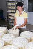 Cheesemaker preparing fresh cheese Royalty Free Stock Images