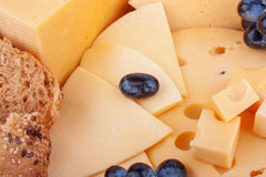 Cheeses background Royalty Free Stock Photography