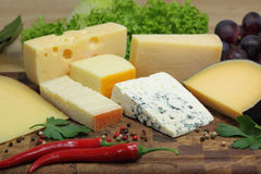 Cheeses Stock Photos