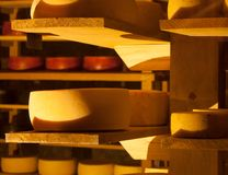 Cheeses different types Inside a cellar level awaiting fermentation process stock photo