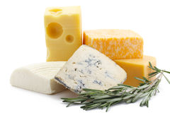 Cheeses of five grades Royalty Free Stock Images