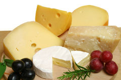 Cheeses and grapes. Variety of cheese: camembert and other hard cheeses Stock Photos