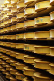 Cheeses industry Stock Photography