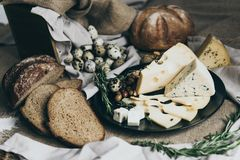 Cheeses lying on black dish and bread situated nearby. Blue cheese, cheese with holes decorated with herbs. Big piece of stock photos