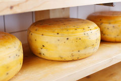 Cheeses on a shelve Royalty Free Stock Photography