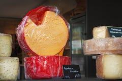Free Cheeses Shop Royalty Free Stock Image - 30306026