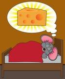 Cheesy Dream Stock Photos