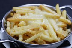 Cheesy french fries stock photos
