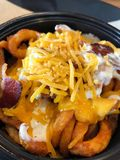 Cheesy Fries With Bacon. A closeup of a bowl of fries with cheese, bacon and ranch dressing stock image