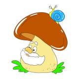 Cheesy Mushroom boletus. Vector mushroom old character. Cheesy Mushroom boletus. Vector mushroom old character isolated Stock Photography