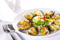 Cheesy mussel dish Stock Images