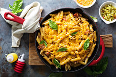 Cheesy pasta bake with ground beef and herbs. Cheesy pasta bake in a pan with ground beef and herbs overhead shot royalty free stock photography