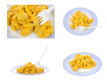 Cheesy pasta shells meal Stock Image
