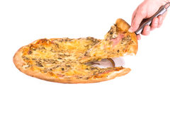 Cheesy pizza. Serving hot pizza with cheese. Shot in studio royalty free stock photography