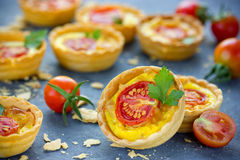 Cheesy tomato tartlets Royalty Free Stock Images