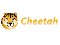 The cheetah Stock Photos