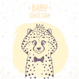 Cheetah baby Royalty Free Stock Image